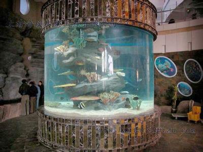 上海鱼缸定做-上海汇蓝海水族