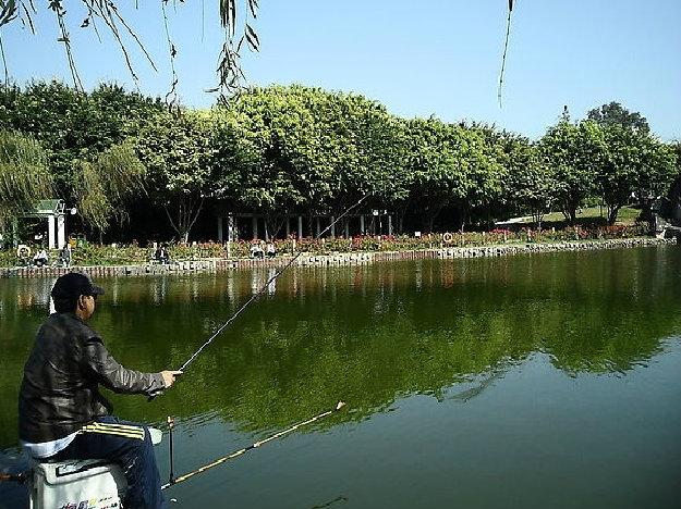 上海西沙一号生态园
