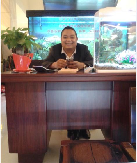 大型鱼缸定做-上海轩海宠物用品有限公司-泰州皇标水族