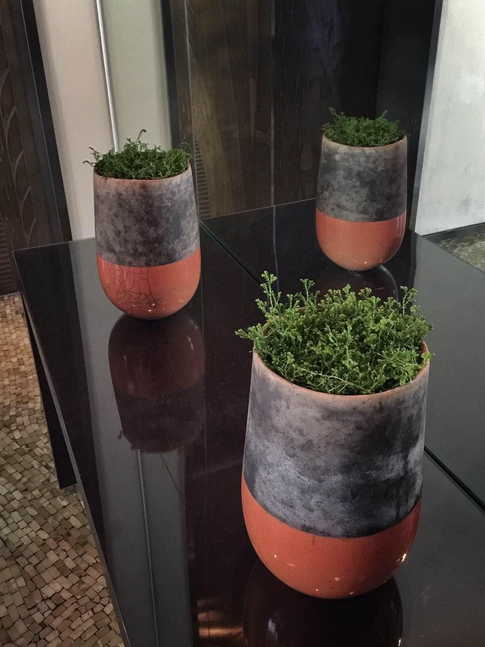上海子姝园林绿化有限公司