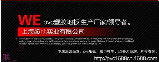 上海鎏地实业有限公司