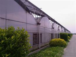 上海温室大棚