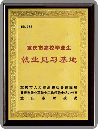 重庆市高效毕业生就业见习基地