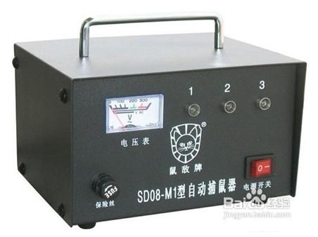 上海专业灭鼠公司_