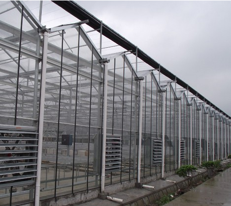 找上海温室大棚的玻璃温室_玻璃温室大棚价格,图片