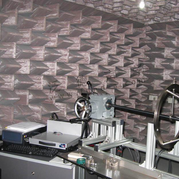 消声室设计建造 为天合汽车(trw)提供声学实验室设计建造工程