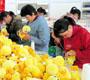 """中国玩具出口企业遭遇""""安全标准""""升级难题"""