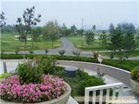 小区绿地养护-上海小区绿地养活-绿化工程公司-专业绿化工程-园林绿化工程-小区绿化-庭院绿化