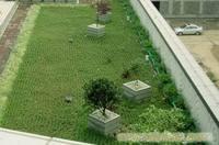 绿化养护公司-浦东绿地养护公司-园林绿化工程-道路绿化-上海屋顶绿化