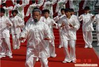 上海市武术队