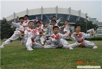 上海学武术