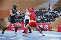 上海武术散打比赛