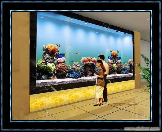 墙面鱼缸设计图片