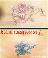 盖疤无痕纹身-上海专业纹身室