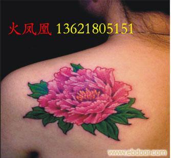牡丹纹身图片_相关信息_火凤凰-上海专业纹身室/上海