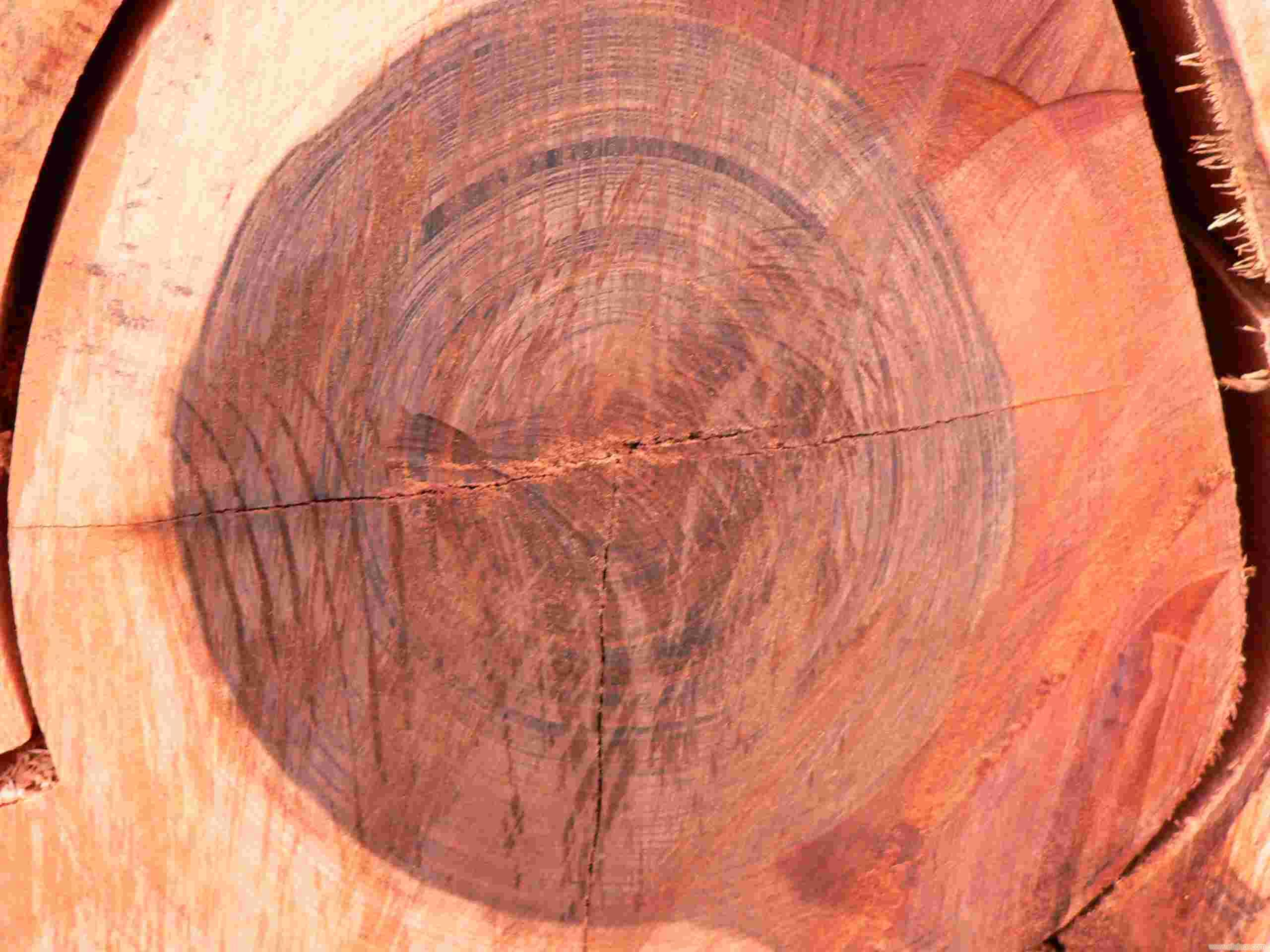 上海木皮代理商,上海木皮代理销售,上海木皮进口代理,上海木皮进口总经销,上海木皮进出口,上海木皮出口FSC,