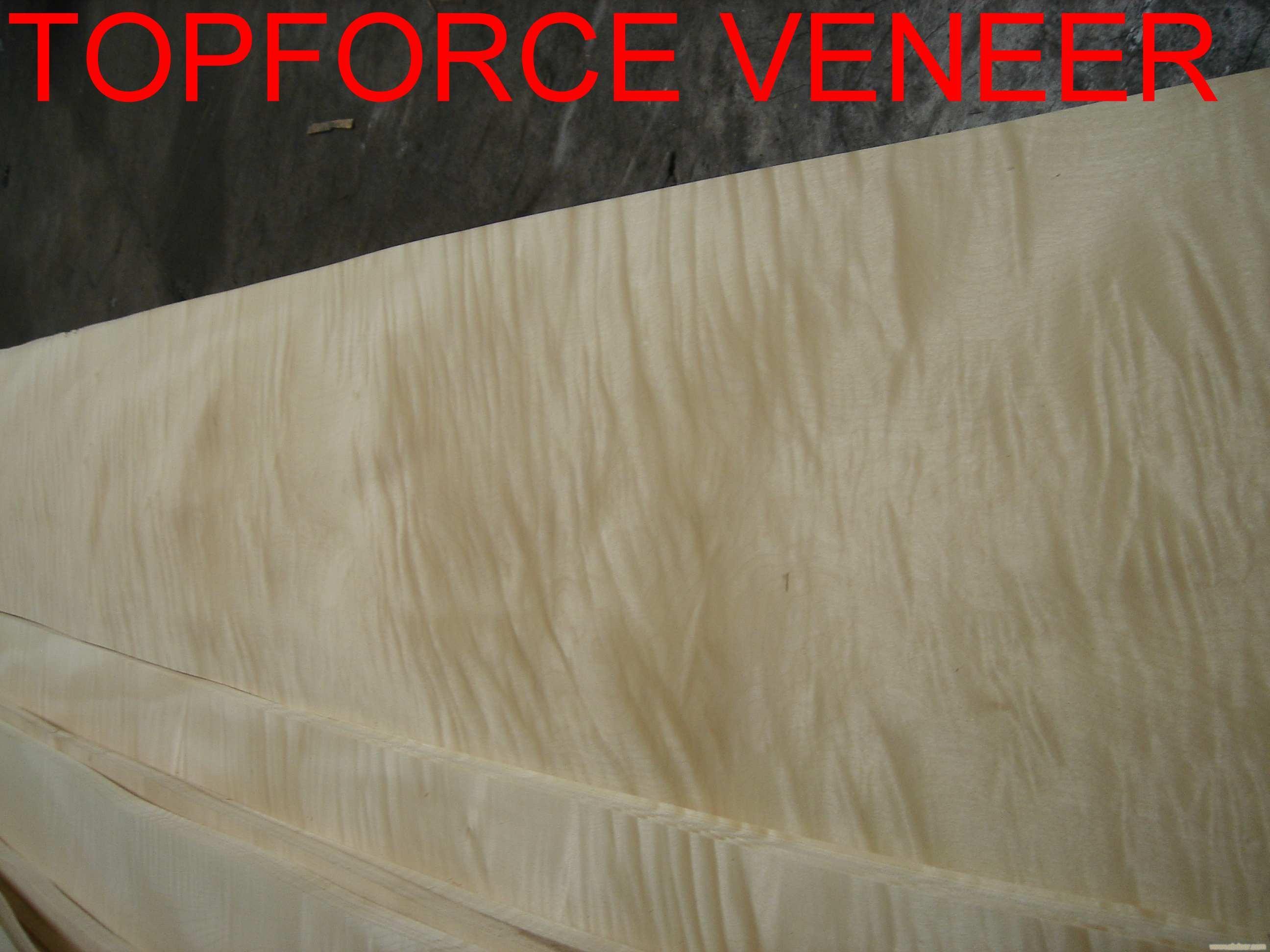 上海木皮十大品牌 The Top 10 Brands of Veneer Supplier in ShangHai China