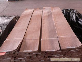 上海黑胡桃原木木皮 ShangHai Walnut Logs and Walnut Veneer