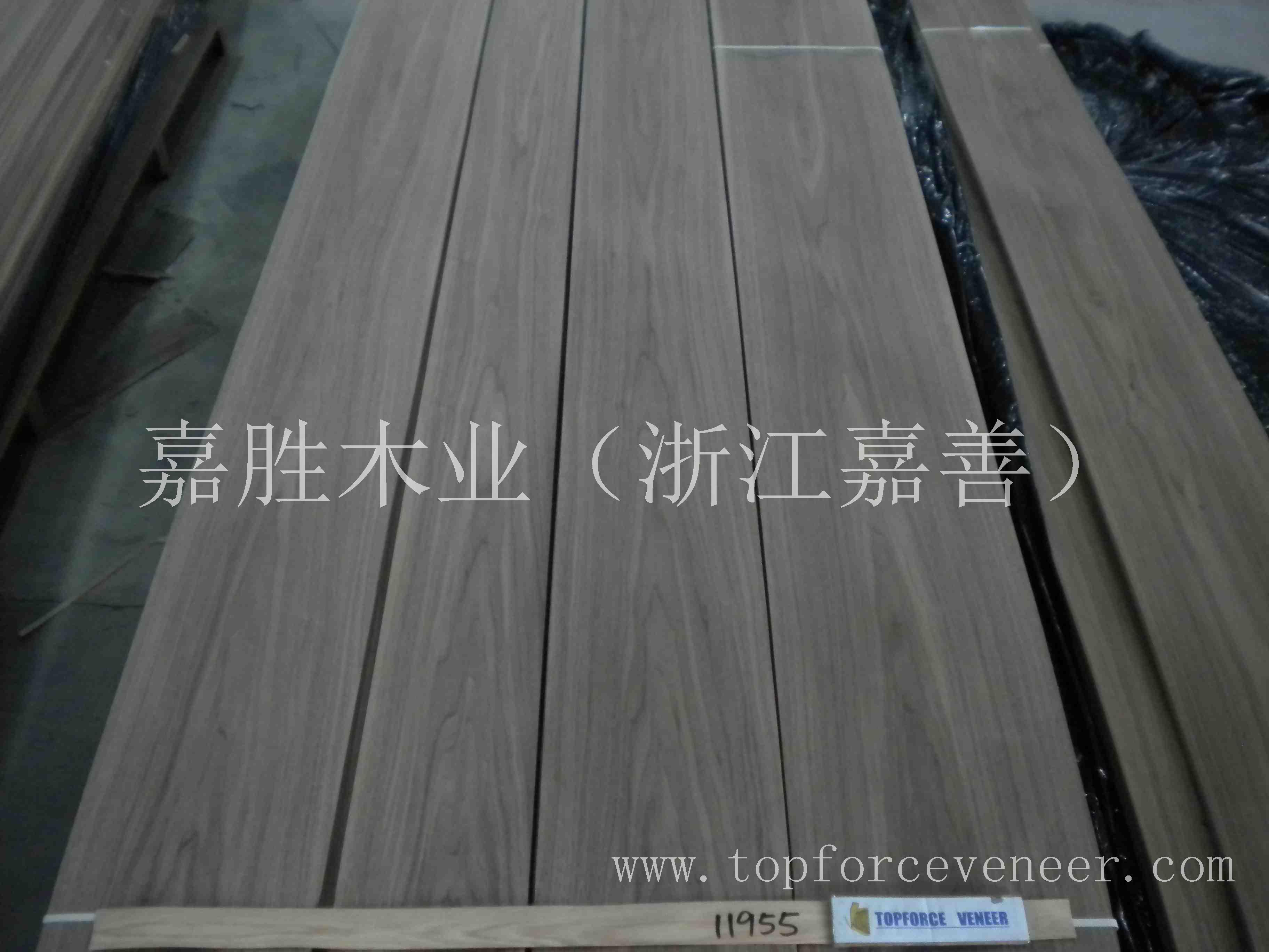 嘉善专业黑胡桃原木ZheJiang JiaXing JiaShan Walnut Veneer and Saw Logs Specialist