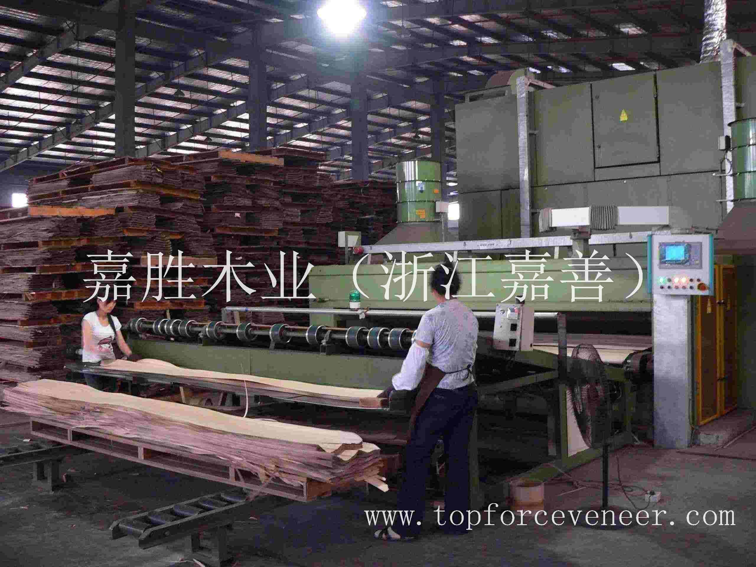 嘉兴原木木皮加工 JiaXing Logs Veneer Cutting and Processing , Dry ,Clipping Custom Cut