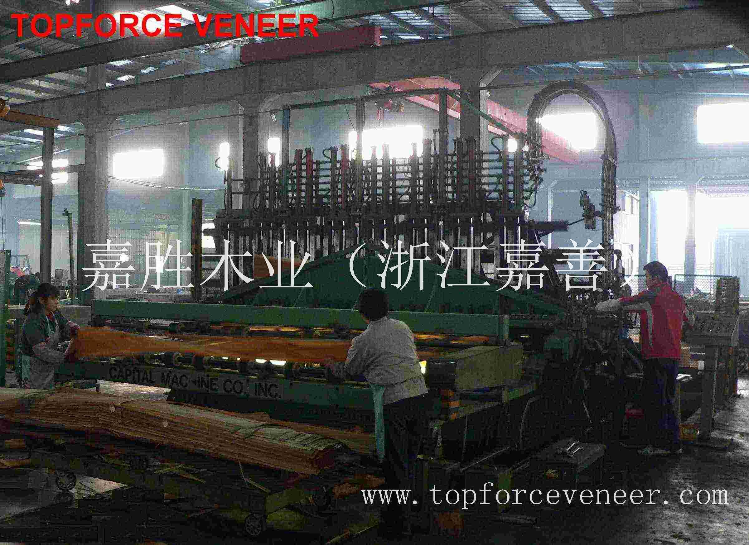 嘉兴原木木皮加工厂 JiaXing Veneer Logs Slicing Into Veneers Mill Factory