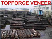浙江嘉善木皮加工厂家 ZheJiang JiaShan Veneer Production Factory