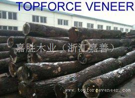 浙江黑胡桃半旋直纹 ShangHai Walnut Rift Cut,Quarter Veneer, ShangHai Walnut Stay Log Slicing Veneer