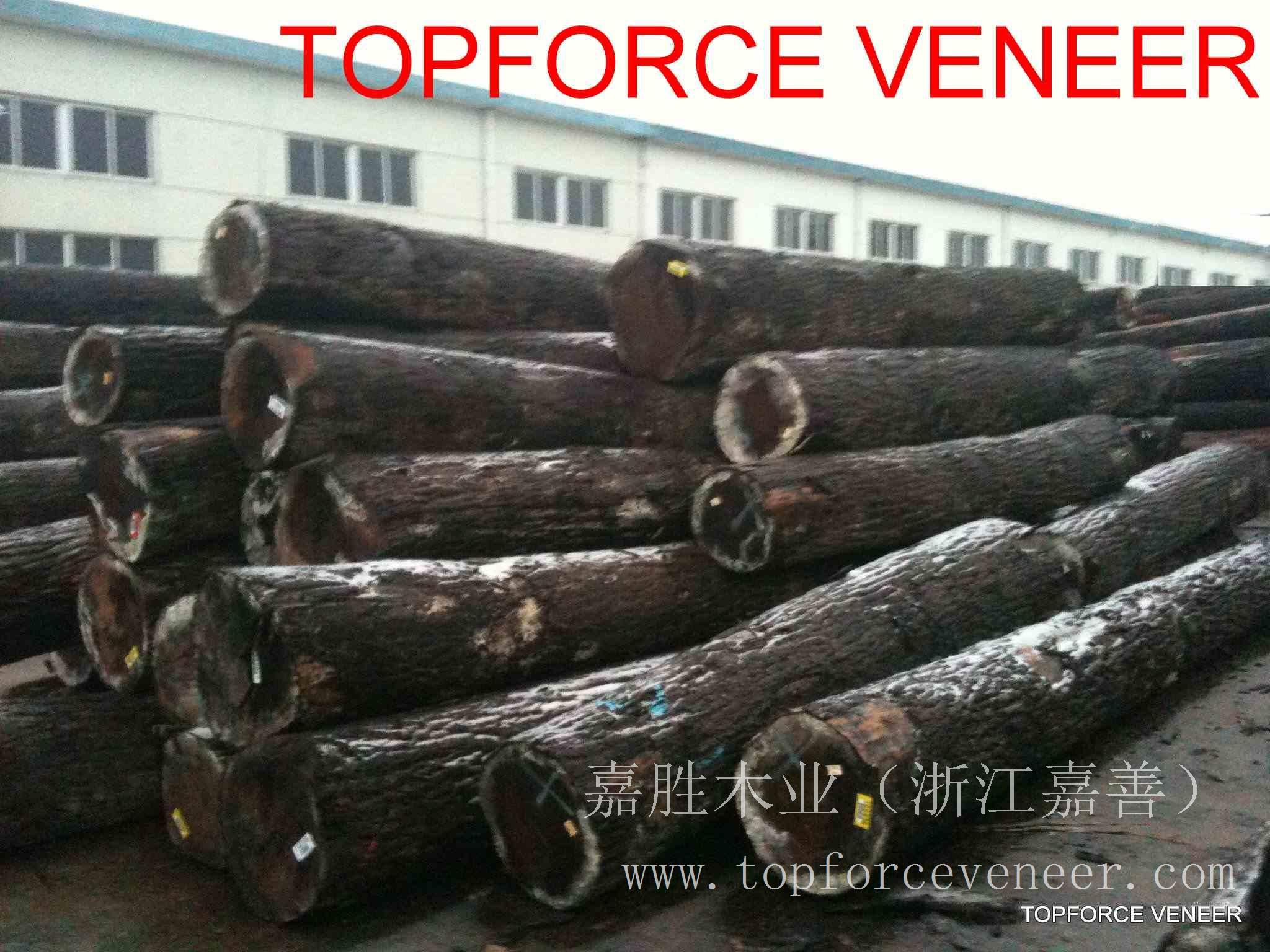 浙江美国黑胡桃原木,ZheJiang American Walnut Logs,二面清,三面清锯切级,三面清旋切级和四面清刨切级,锯切