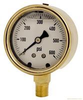 YT-100精密铜壳压力表