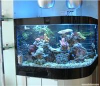 订做大型鱼缸-鱼缸订做-鱼缸养护-定制鱼缸