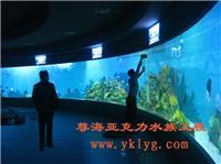 上海订做鱼缸-鱼缸设计-鱼缸订做