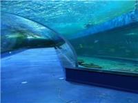 鱼缸定做-亚克力鱼缸-亚克力水族工程
