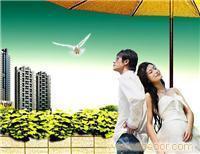 找上海抵押贷款\/房产抵押\/房屋贷款\/企业贷款\/短