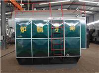 DZG系列蒸汽锅炉