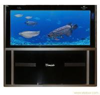 黑色HZZ可爱多系列 上海水族箱专卖