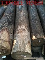 嘉兴嘉善泡桐(梧桐),木皮生产厂家