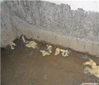 上海防水堵漏工程,上海防水堵漏工程电话,上海防水堵漏工程地址,防水堵漏工程联系人