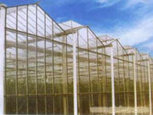 SLP小屋顶玻璃温室大棚-上海承建玻璃温室