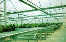 GLW622型连栋塑料温室大棚