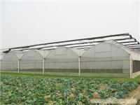 GSW-8430型连栋温室_上海温室大棚_上海温室大棚搭建_温室工程设备