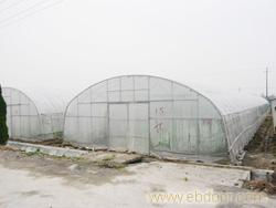 GP-832型单体拱型大棚_上海温室大棚_单体拱型大棚搭建_上海温室大棚价格