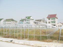 GP625型单体钢管大棚_上海温室大棚_上海温室工程_单体钢管大棚价格