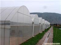 GLP-622型连栋薄膜温室大棚_上海温室大棚_上海温室工程_上海蔬菜大棚