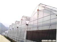 锯齿型温室_上海温室大棚搭建_上海塑料薄膜大棚_上海温室设备