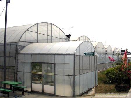 外置缓冲间薄膜温室-上海温室大棚搭建-上海温室设备-上海温室工程