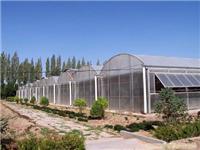 圆拱型PC板温室-上海温室大棚搭建-上海温室工程-上海温室设备厂家