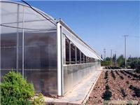 侧开窗PC板温室-上海PC板温室厂家-上海温室大棚-上海温室工程