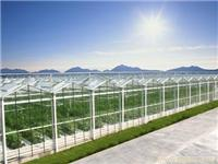 文洛式小尖顶玻璃温室-上海玻璃温室设备-上海温室大棚-上海温室设备厂家