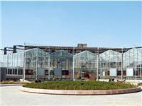 扇型玻璃温室-上海玻璃温室搭建-上海玻璃温室大棚-上海温室工程