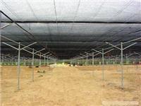 上海遮荫棚-上海遮荫棚搭建-上海温室工程-上海温室大棚搭建